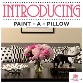 Introducing Paint-A-Pillow