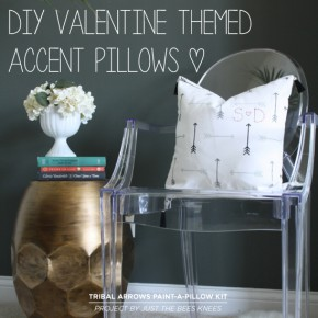 DIY Valentine Themed Accent Pillows