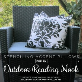 Cutting Edge Stencils shares how to create DIY outdoor accent pillows using the Wild Berry Damask Paint-A-Pillow kit. http://paintapillow.com/index.php/wild-berry-damask-paint-a-pillow-kit.html