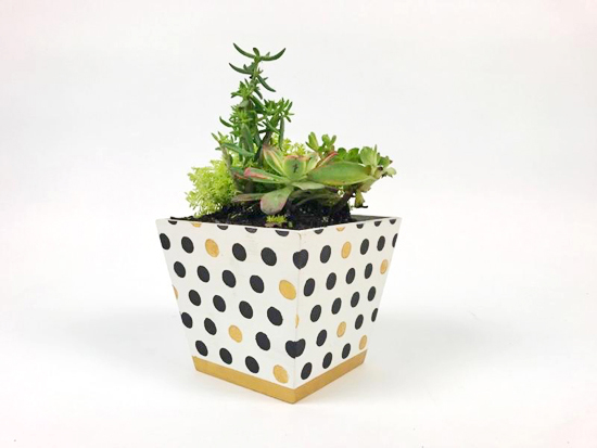 Learn how to stencil an Ikea Vildapel flower pot using the Polka Dot Craft Stencil from Cutting Edge Stencils. The first thing Erika did was tape the four canvases together. http://www.cuttingedgestencils.com/polka-dot-stencils-for-DIY-crafts.html
